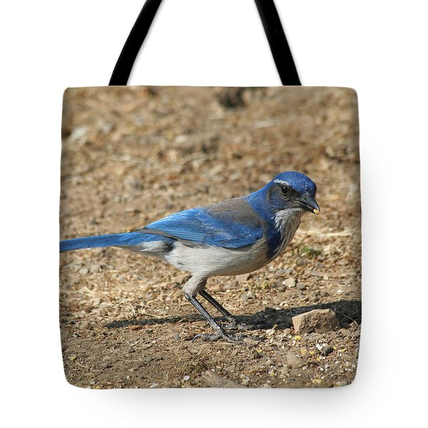 Tote Bag featuring the photograph Scrub Jay by Bob and Jan Shriner