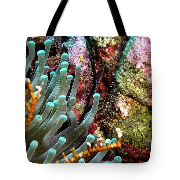 Tote Bag featuring the photograph Sea Anemone And Coral Rainbow Wall by Amy McDaniel
