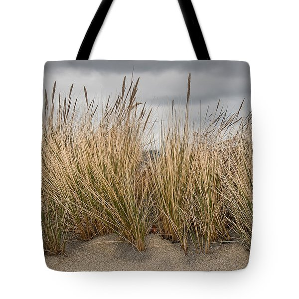 Sea Grass And Sand Tote Bag