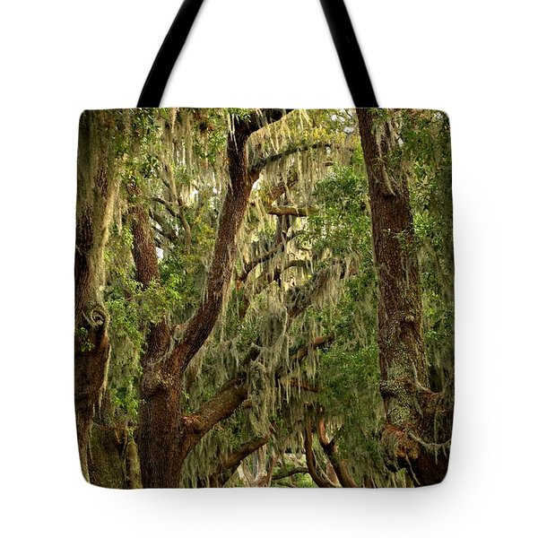 Sea Island Oaks Portrait Tote Bag
