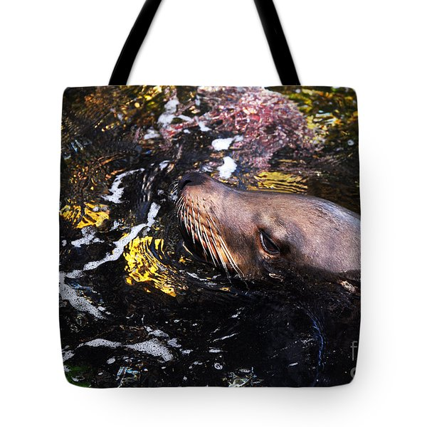 Sea Lion Posing For A Headshot Tote Bag