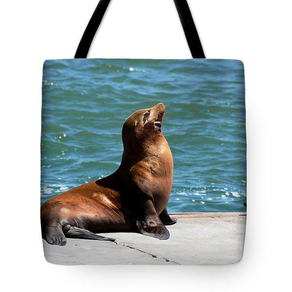 Sea Lion Posing On Boat Dock Tote Bag