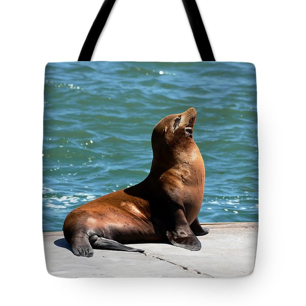 Sea Lion Posing On Boat Dock Tote Bag