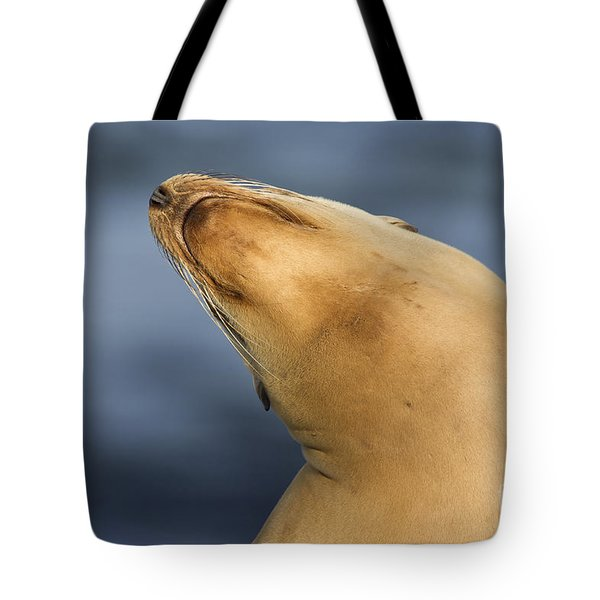 Tote Bag featuring the photograph Sea Lion Stretch by Bryan Keil
