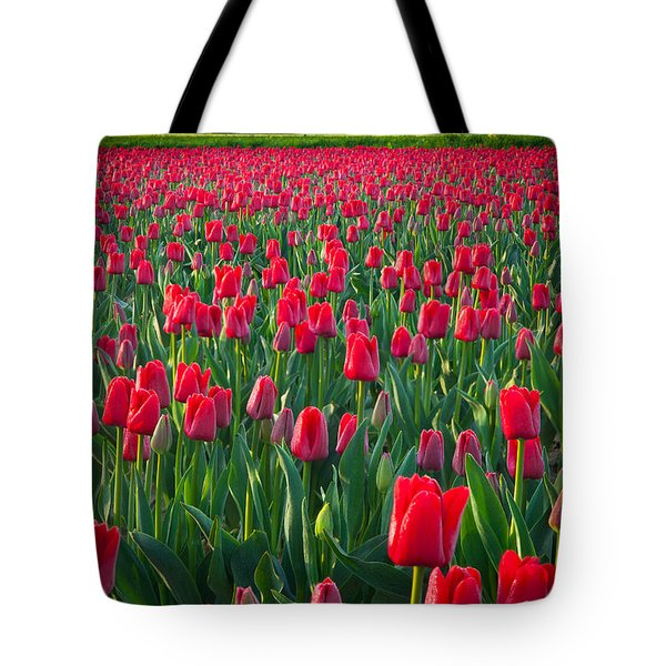Sea Of Red Tulips Tote Bag by Inge Johnsson
