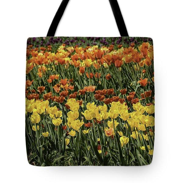 Sea Of Tulips Tote Bag by LeeAnn McLaneGoetz McLaneGoetzStudioLLCcom