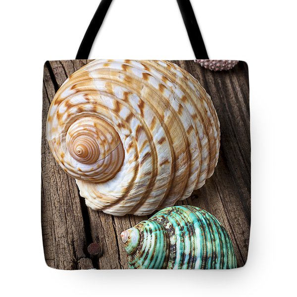 Sea Shells With Urchin  Tote Bag by Garry Gay