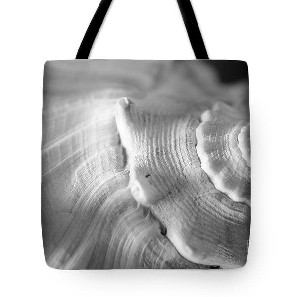Sea Treasure Tote Bag by Kelly Nowak