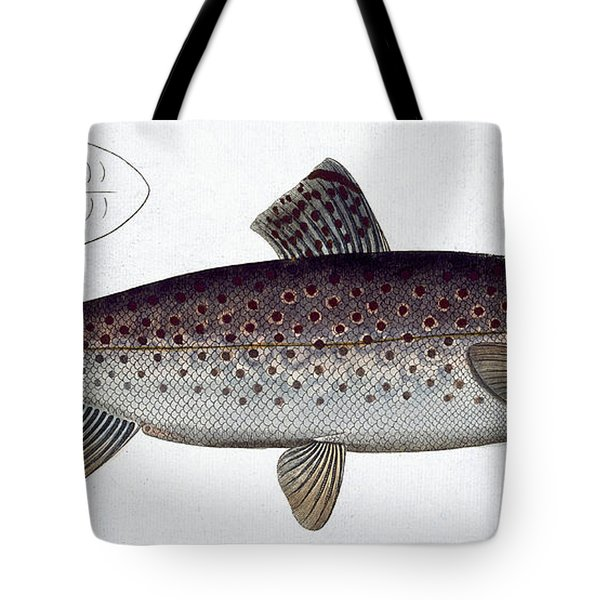 Sea Trout Tote Bag by Andreas Ludwig Kruger
