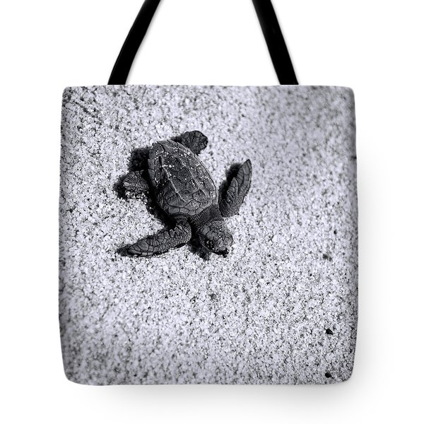 Sea Turtle In Black And White Tote Bag by Sebastian Musial