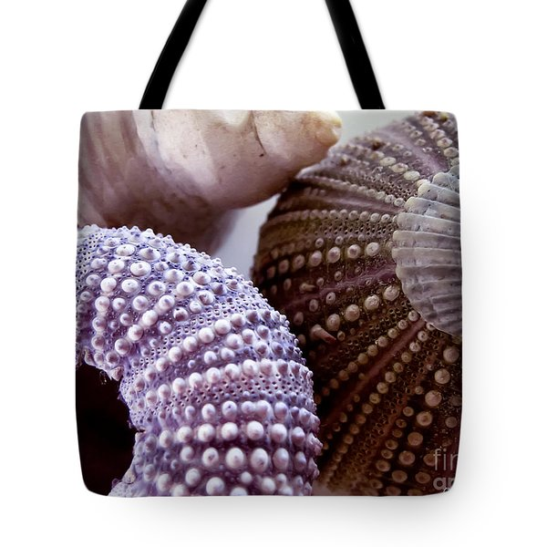 Sea Urchins  Tote Bag by Colleen Kammerer