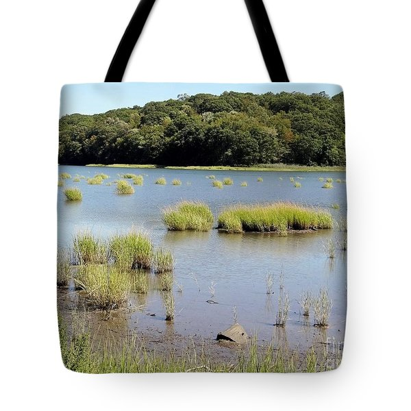 Tote Bag featuring the photograph Seagrass by Ed Weidman