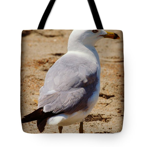 Seagull 3 Series 2 Tote Bag by Kelly Nowak