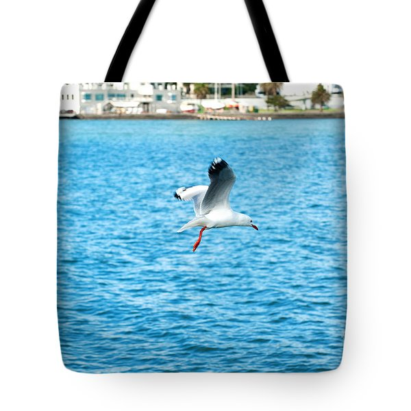Tote Bag featuring the photograph Seagull At St Kilda by Yew Kwang