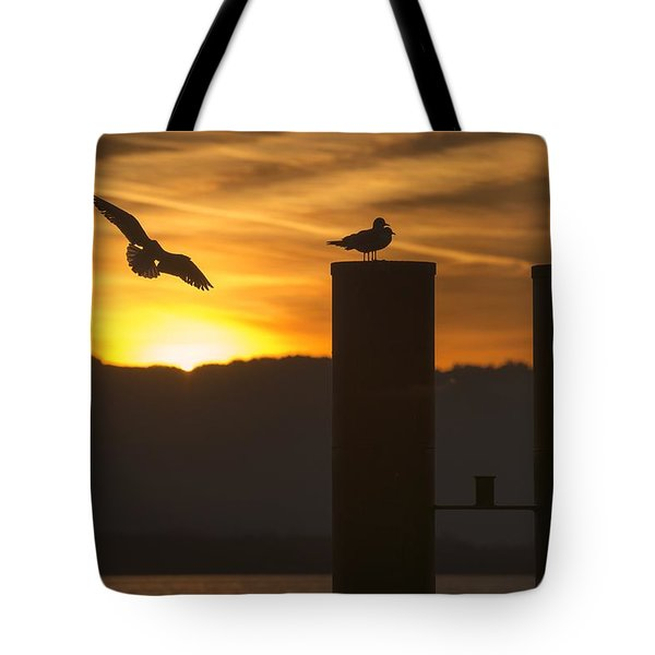 Seagull In The Sunset Tote Bag by Chevy Fleet