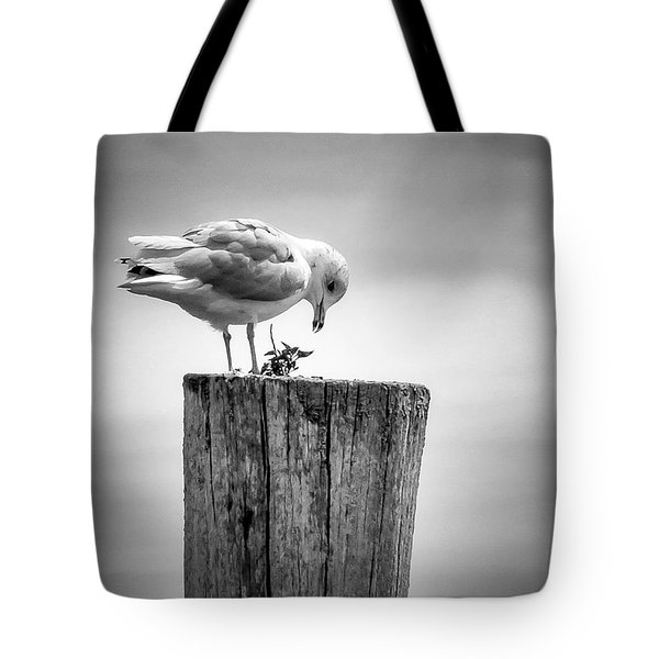Seagull On Pier  Tote Bag