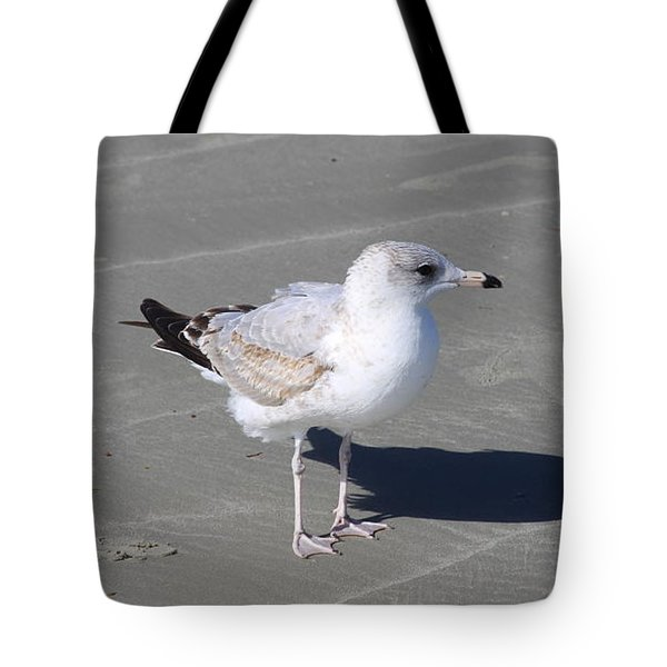 Seagull On The Hunt Tote Bag