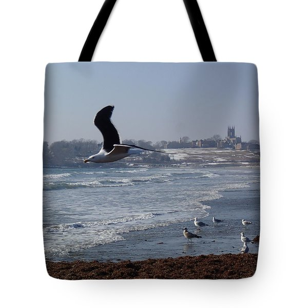 Seagull Tote Bag by Robert Nickologianis