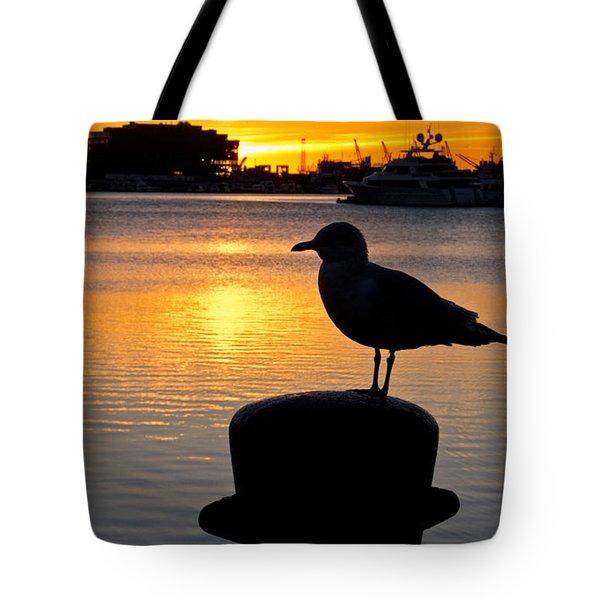 Seagull Silhouette Sunrise Tote Bag