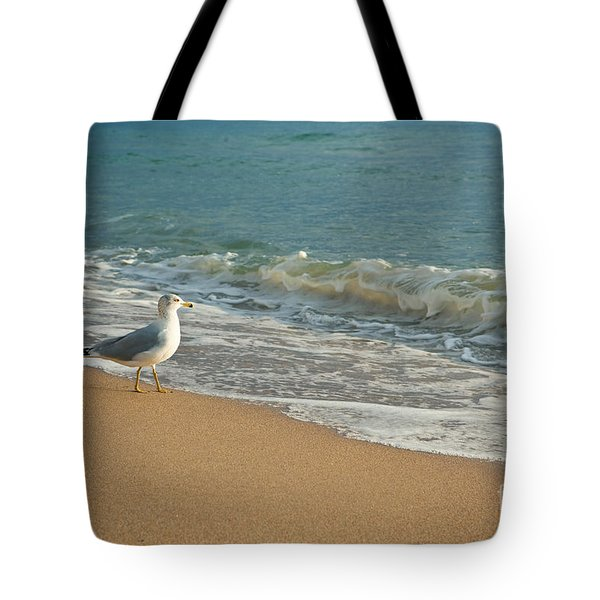 Seagull Walking On A Beach Tote Bag by Sharon Dominick