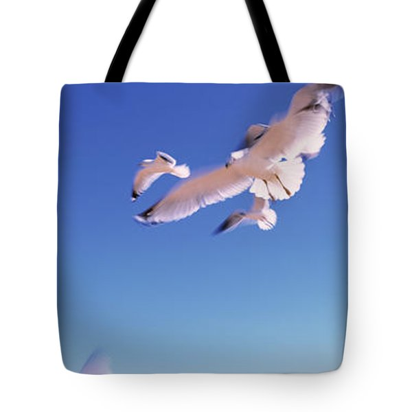 Seagulls Flying Along Route A1a Tote Bag