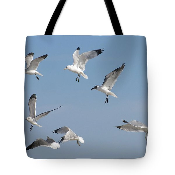 Seagulls See A Cracker Tote Bag