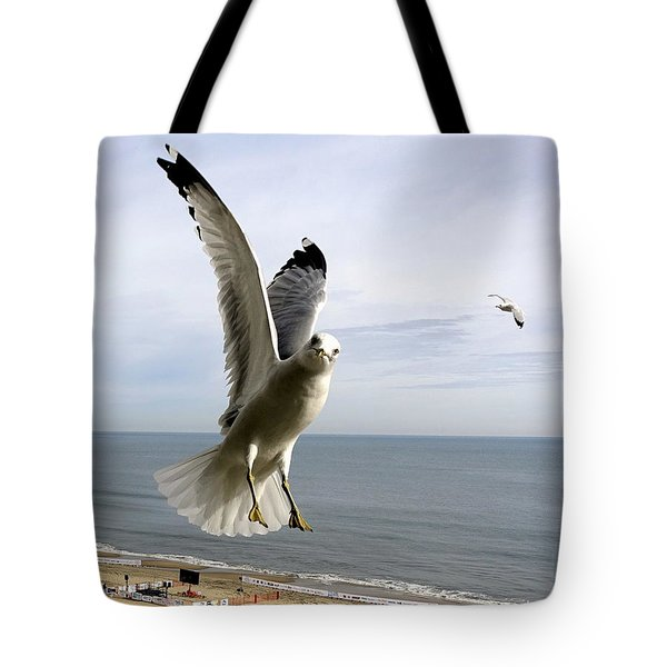 Inquisitive Seagull Tote Bag