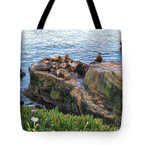 Seals And Pups Tote Bag by Bedros Awak