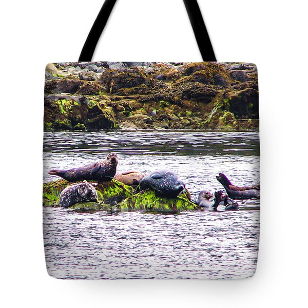 Seals Resting Tote Bag by Robert Bales