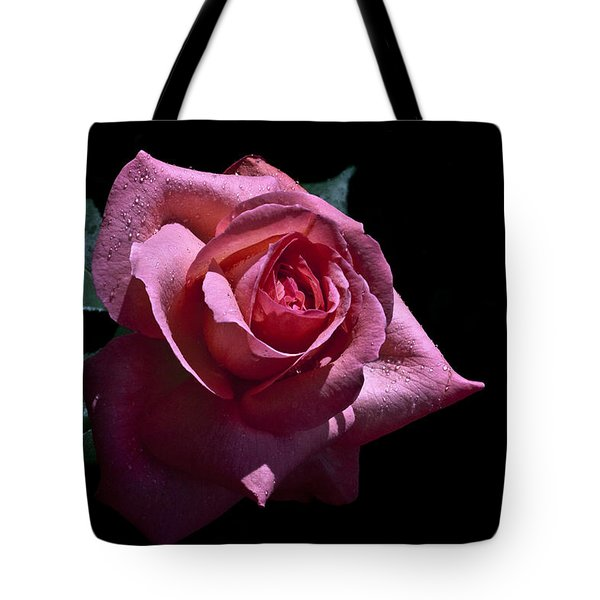 Tote Bag featuring the photograph Searching by Doug Norkum