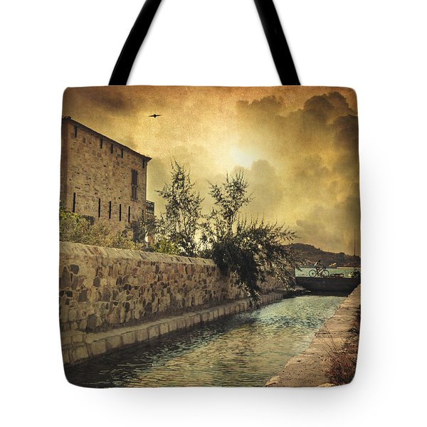 Searching The Past Tote Bag by Taylan Apukovska
