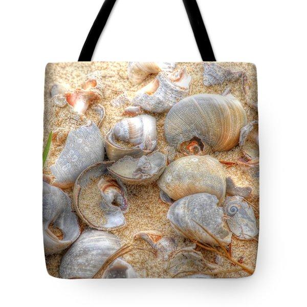 Seashell 01 Tote Bag