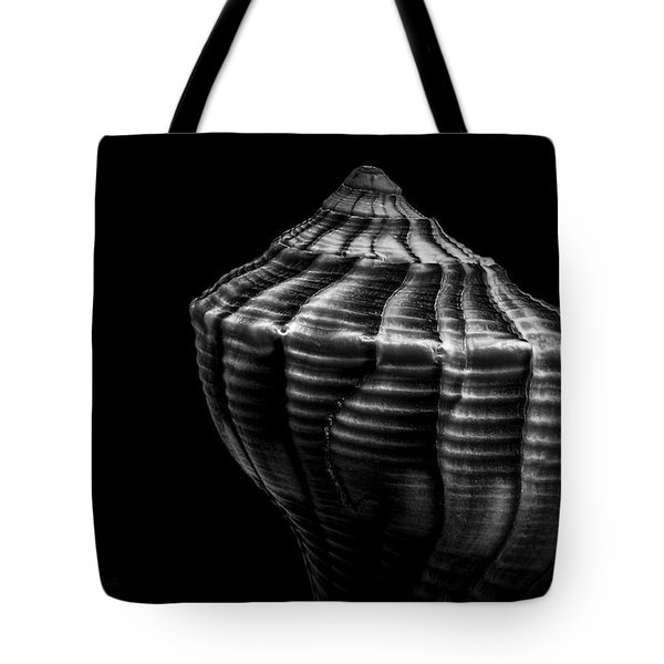 Seashell On Black Tote Bag by Bob Orsillo
