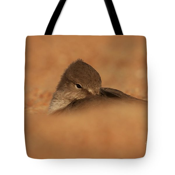 Tote Bag featuring the photograph Seashell Solitude by John F Tsumas