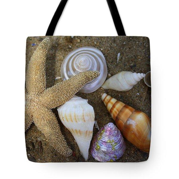 Seashells And Star Fish Tote Bag
