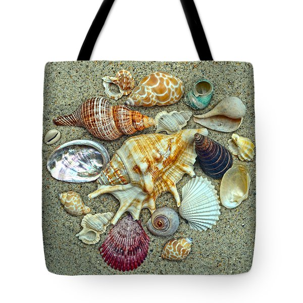 Seashells Collection Tote Bag