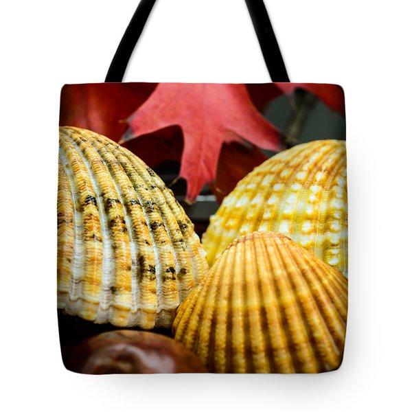 Seashells II Tote Bag by Marco Oliveira