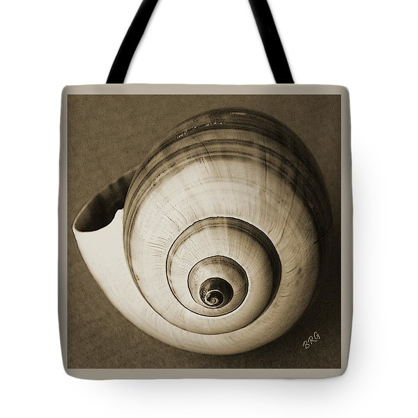 Seashells Spectacular No 25 Tote Bag