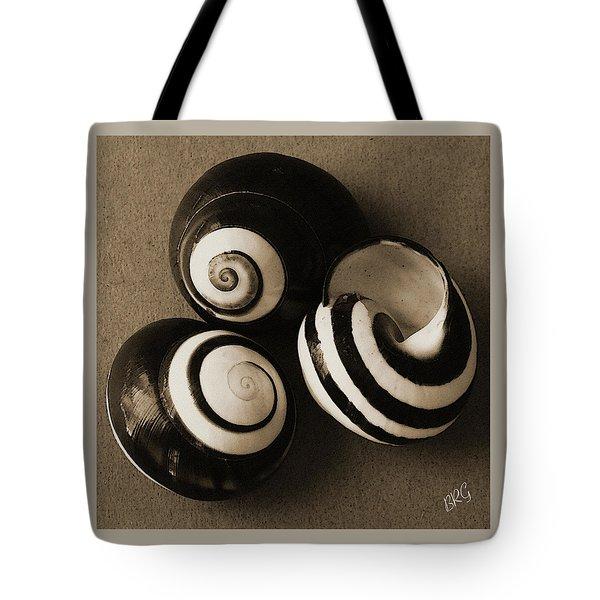 Seashells Spectacular No 27 Tote Bag