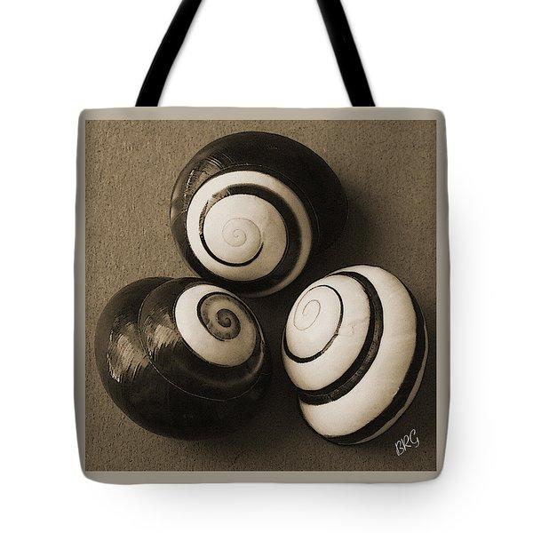 Seashells Spectacular No 28 Tote Bag