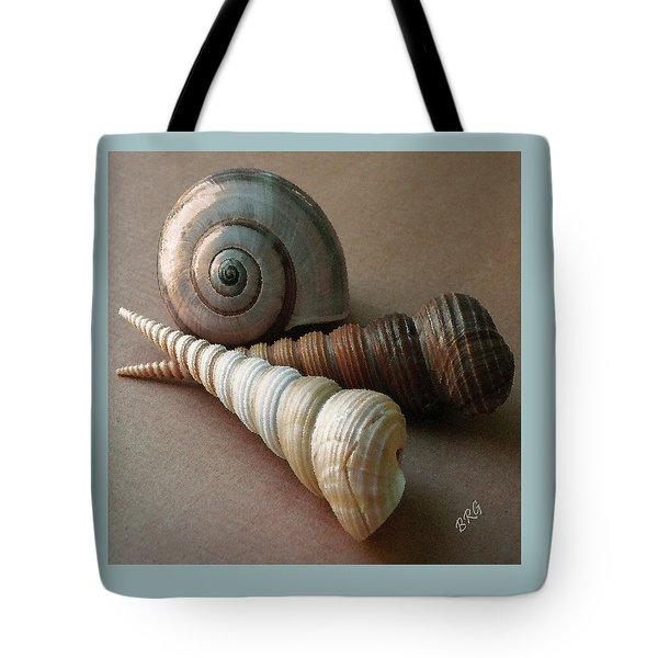 Seashells Spectacular No 29  Tote Bag