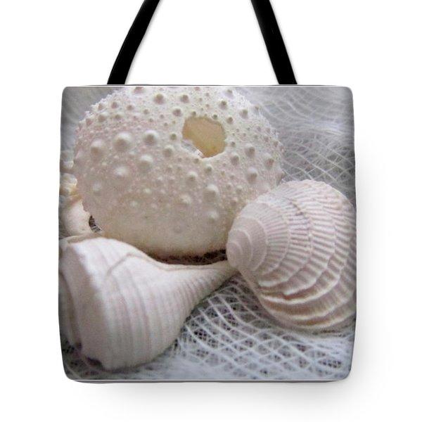 Seashells Study 1 Tote Bag by Danielle  Parent