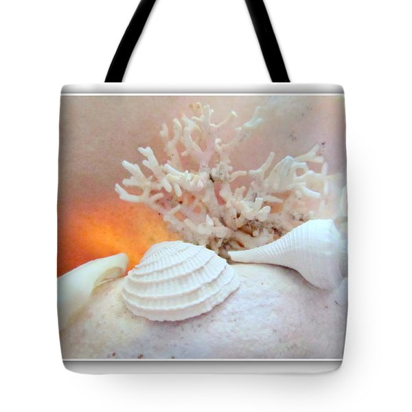 Seashells Study 3 Tote Bag