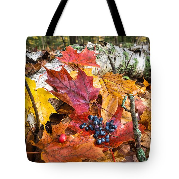 Season Finale  Tote Bag by Bill Pevlor