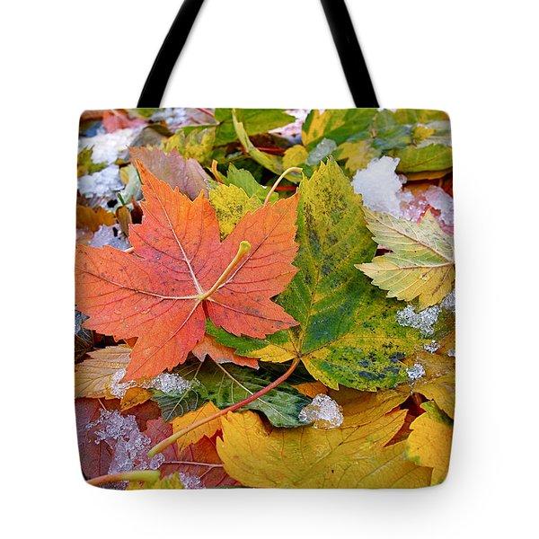 Seasonal Mix Tote Bag by Rona Black