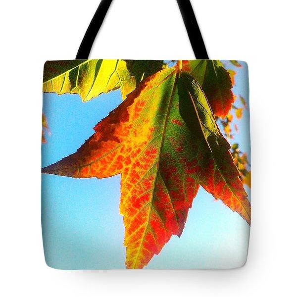 Season's Change Tote Bag by James Aiken