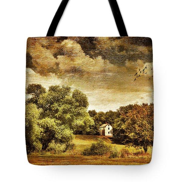 Seasons Change Tote Bag by Lois Bryan