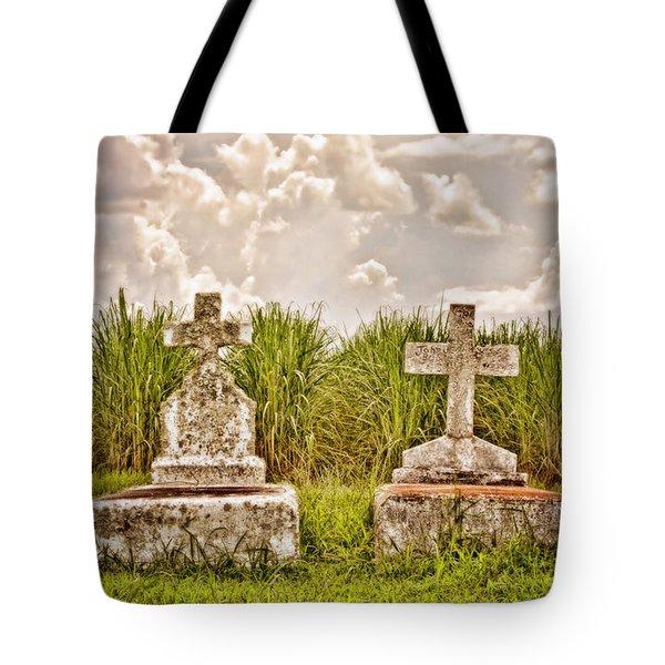 Seasons Of Life Tote Bag by Scott Pellegrin