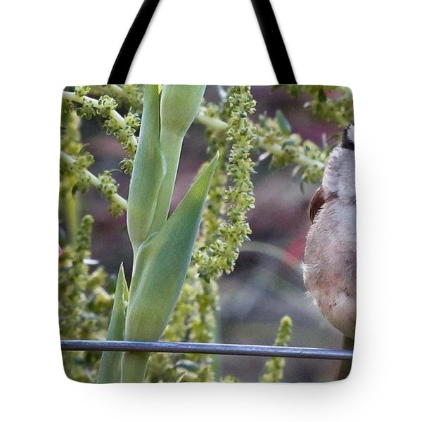 Seattle Bird Tote Bag