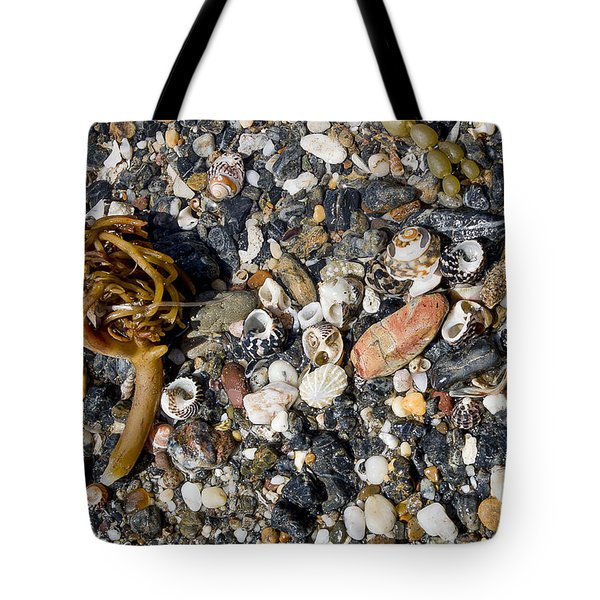 Seaweed And Shells Tote Bag by Steven Ralser